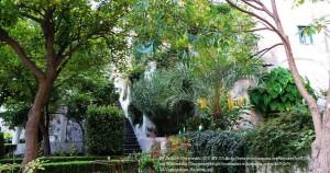 ミネルヴァの庭園