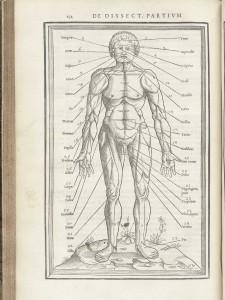 シャルル・エチエンヌの出版した書籍(解剖学の書)『Charles Estienne's De dissectione partium corporis humani libri tres 』