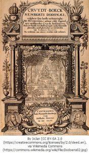 レンベルト・ドドエンスの『クリュードベック』(1554年出版)