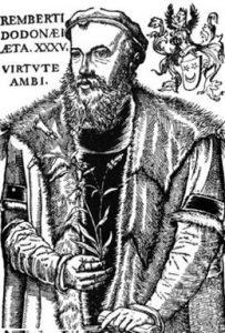 レンベルト・ドドエンス(Rembert Dodoens, 1517年~1585年)