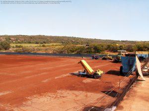 南アフリカ西ケープ州Clanwilliamのルイボス畑 / ここで生の葉を乾燥し、屋外で発酵させる。