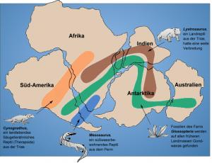 古代のゴンドワナ大陸が分裂していく様子と、植物・動物の分布
