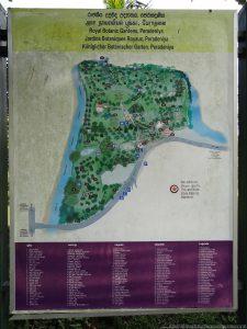 ペーラーデニヤ植物園の全体を記したマップ(植物園エントランス)