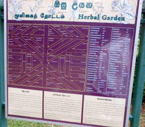 ペーラーデニヤ植物園内ハーブ・ガーデンのマップ(ガーデン内のハーブ一覧)