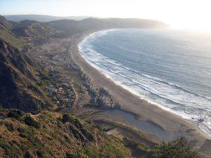 チリ中部のプエルテシロ海岸(チリのカルデナール・カロ県ナビダー)