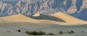 """デスヴァレーの砂丘""""Mesquite Flat Sand Dunes"""""""