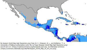 フロリダ半島とメキシコの熱帯気候の位置(薄い青色:Aw、青色:Am、濃い青色:Af)