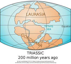 2億年前の、ローラシア大陸とゴンドワナ大陸