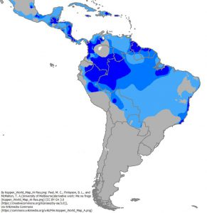 南アメリカの熱帯気候の位置(青色3種:A)