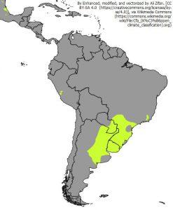 南アメリカの温暖湿潤気候の位置(黄緑色:Cfa)