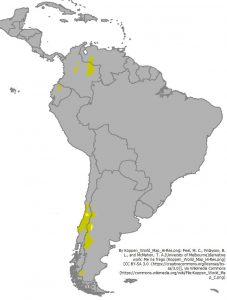 南アメリカの地中海性気候の位置(明るい黄色:Csa、山吹色:Csb)