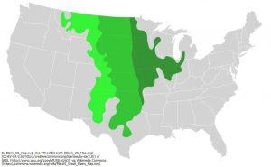 アメリカ合衆国のグレートプレーンズの位置:緑色の色が濃いほど、背丈の高い草地を表している(短い - 中間 - 長い の3段階の草の背丈)。西から東へ行くほど湿潤になり、背丈も高くなっている。