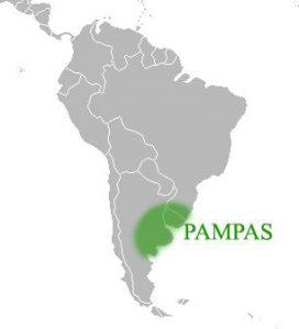 パンパの位置(アルゼンチンからウルグアイにかけて)