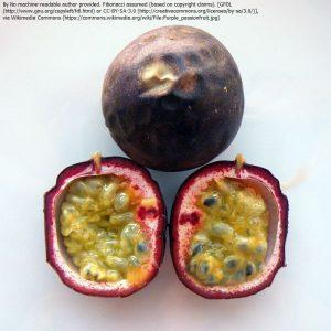 クダモノトケイソウ(パッションフルーツ)の果実。中に種子が見える。