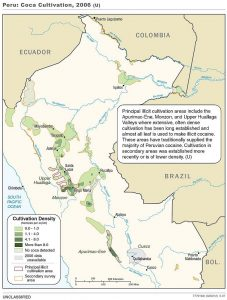 ペルーのコカ栽培地(2006年)