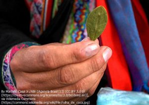 コカの葉を持つインディオ(ボリビア)