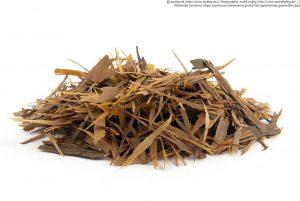 カットされたパウダルコの樹皮(=ラパチョ)
