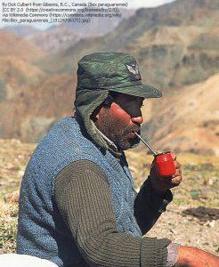 マテ茶を飲むガウチョ(=南アメリカの草原のカウボーイ)。マテ茶は、アルゼンチンやその周辺の草原地帯で飲用される。