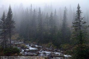 バイカル自然保護区(ロシア)