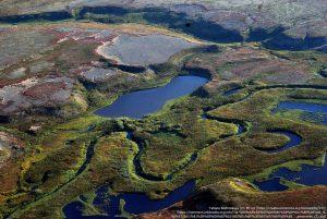 9月のツンドラ / 北極海に面したヤマロ・ネネツ自治管区(ロシア)