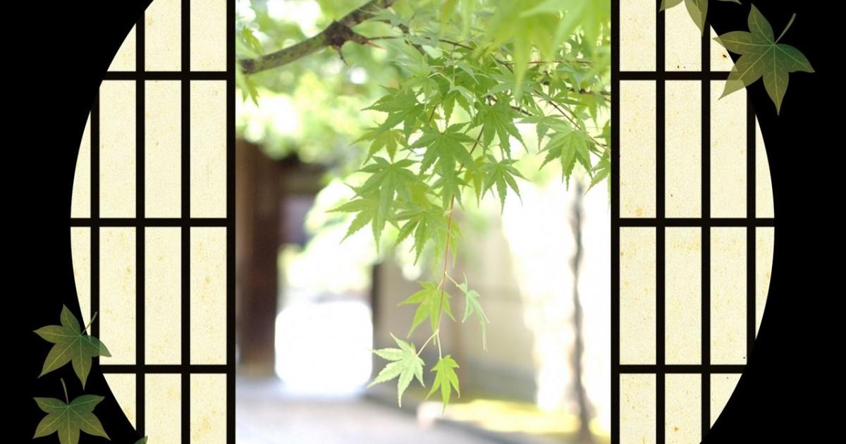 ハーブ周辺の法律と事情:日本